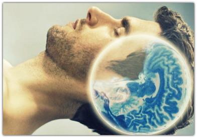 Сон и память