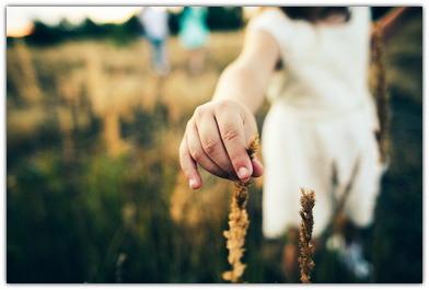 Как привить любовь к природе детям и взрослым