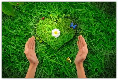 Картинки про любовь с природой